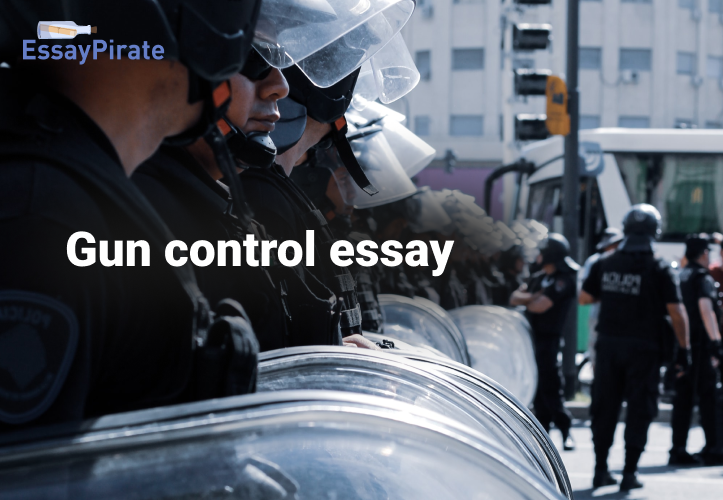 Great Performance Rates with Our Gun Control Essay Guide